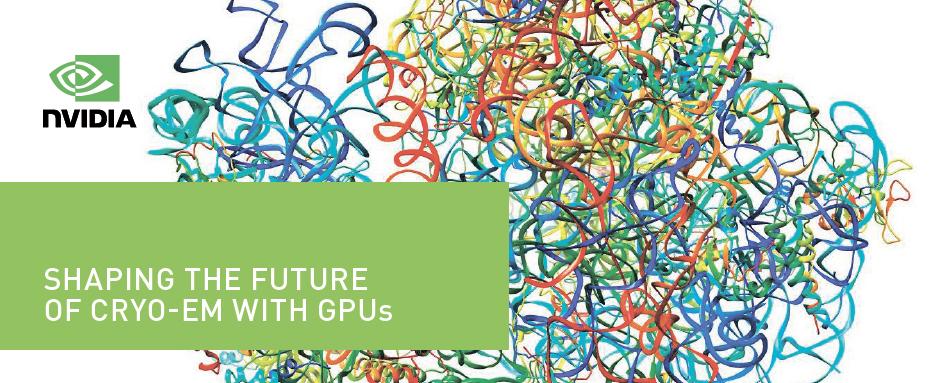 Новости технологий: Nvidia сделали подборку материалов по железу и софту для обработки данных с криоэлектронного микроскопа